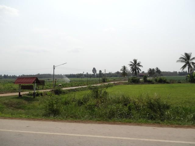 DSC05494